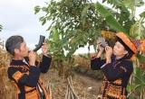Tiếng Tù và chào mừng năm mới của người M'Nông