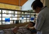 TP.HCM: Hơn 6.000 bệnh nhân mắc sốt xuất huyết trong hơn 1 tháng