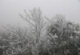 Băng tuyết kỳ thú trên đèo Ô Quý Hồ