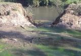Cá chết trắng sông Krông Năng, Sở TNMT kiểm tra gấp Nhà máy tinh bột sắn sau phản ánh của Pháp luật Plus