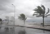 Dự báo thời tiết ngày 15/01: Áp thấp trên biển, Nam Bộ mưa lớn