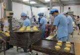 Phát hiện 133 cơ sở sản xuất bánh trung thu vi phạm vệ sinh an toàn thực phẩm