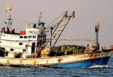 Nhiều tàu cá ở Cà Mau xin rút khỏi danh sách hỗ trợ