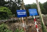 Vụ xẻ thịt rừng phòng hộ huyện Sóc Sơn: Xin điều chỉnh quy hoạch, có dấu hiệu 'lợi ích nhóm'!