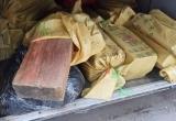 Gỗ sưa, gỗ nghiến lậu 'chạy' về Thủ đô bằng xe khách