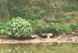 Phát hiện thi thể nam đang phân hủy trên sông Nhuệ