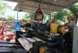 Nghệ An: Vì sao hàng loạt xưởng gỗ '3 không' vẫn rầm rộ hoạt động?