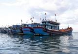 Ngư phủ suy tim chết do tự nhảy xuống biển, chủ tàu có phải bồi thường thiệt hại?