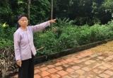 Hà Nội: 15 năm dắt díu đi đòi quyền thừa kế