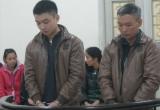 Hai cha con cùng đi tù vì 'rủ nhau' giết người