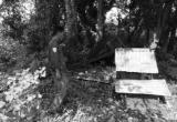 Gia Lai: Sợ bị 'phạt vạ', mẹ hại chết con mới đẻ
