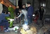 Hà Tĩnh: Vây bắt thành công băng nhóm trộm chó