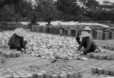 Những làng nghề đan cỏ thành tiền
