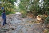 Quảng Nam: Vỡ hồ chứa quặng của Cty khai thác vàng dẫn đến ô nhiễm môi trường