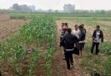 Hà Nội: Hai nhóm thanh niên hỗn chiến, 1 người tử vong