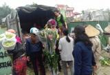Hà Nội: Hoa ly rớt giá thê thảm, người dân rủ nhau 'giải cứu'