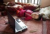 Nghị lực phi thường của cô gái tàn tật ở Ninh Bình
