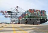 Xây dựng Trung tâm logistics, cảng tổng hợp Cái Mép hạ