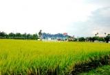 Điều chỉnh quy hoạch sử dụng đất tỉnh Quảng Ngãi và Quảng Trị