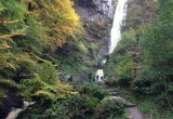 Bé 3 tuổi trượt chân ngã xuống thác nước cao 45 mét vẫn may mắn sống sót