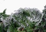 Lạng Sơn: Du khách đổ dồn ngắm nhìn băng tuyết phủ trắng đỉnh Mẫu Sơn