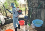Sử dụng số liệu quan trắc vệ tinh để... phòng, chống sốt xuất huyết