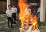 Lạng Sơn: Tiêu hủy hơn 45 bánh hêrôin, 8kg ma túy đá thu được từ 12 vụ án