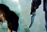 Hải Phòng: Chồng trẻ đâm vợ tử vong do mâu thuẫn khi bàn chuyện về quê