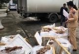 Thanh Hoá: Bắt giữ 280kg thịt động vật 'bốc mùi' không có giấy tờ