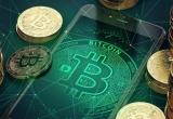 Giá Bitcoin hôm nay 12/1: Bitcoin rơi tự do, chạm đáy 13.000 USD