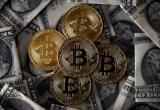 Giá Bitcoin hôm nay 5/3: Giá Bitcoin có thể tăng lên 25.000 USD trong năm 2018
