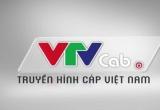 VTVCab được định giá lên đến 12.376 tỉ đồng
