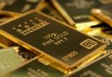 Giá vàng hôm nay 25/9: Giá vàng có thể tăng vọt