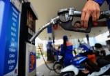 Xăng có thể giảm tới 1.500 đồng/lít vào ngày mai