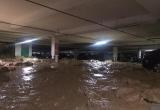 Sập vách ngăn tầng hầm tại chung cư Giai Việt: Nhiều phương tiện bị vùi lấp