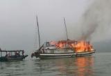 Quảng Ninh: Tạm dừng toàn bộ các tàu du lịch của công ty TNHH Du thuyền Bhaya