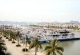 Quảng Ninh: Chủ động phòng chống bão số 5, tạm dừng cấp lệnh xuất bến các phương tiện thủy trên địa bàn