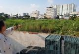 TP Vũng Tàu: Dự án Trung tâm thương mại Thái Dương thay đổi công năng gây lãng phí tài sản nhà nước, thiệt dân?