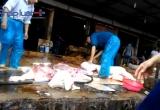 Kinh hoàng lò mổ lợn gây ô nhiễm môi trường