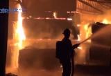 Bình Dương: 'Bà hỏa' thiêu rụi xưởng ván ép trong đêm