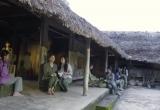 Xúc động những thước phim về 10 cô gái Ngã ba Đồng Lộc của NSƯT Tố Nga