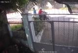 """Clip thanh nên đi xe máy """"tiện tay"""" trộm luôn thùng rác"""