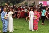Người dân Thủ đô hào hứng với lễ hội Hoa Anh Đào lớn nhất Việt Nam