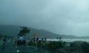Đà Nẵng họp khẩn khắc phục hậu quả bão trước Tuần lễ cấp cao APEC
