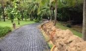 Đà Nẵng: Triển khai lối xuống biển khu vực giữa 2 dự án Furama và Ariyana