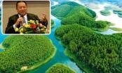 Dự án nghỉ dưỡng nghìn tỷ của đại gia Lê Phước Vũ phải ngừng triển khai