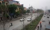 Phong lá đỏ ở Hà Nội chưa kịp đỏ đã ngả... màu đen