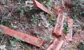 Phá rừng trong VQG Phong Nha - Kẻ Bàng, Bí thư Tỉnh uỷ chỉ đạo xử lý nghiêm