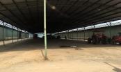 Tổng giám đốc siêu dự án chăn nuôi ở Hà Tĩnh bị bắt