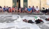 Con trai phó bí thư tỉnh ủy An Giang tổ chức đá gà, đánh bạc